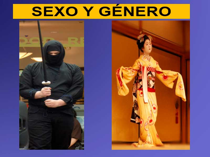 sistema-sexo-genero-en-japon-